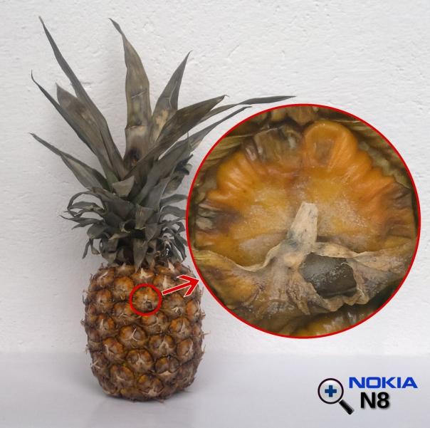 Nokia N8 zoom,